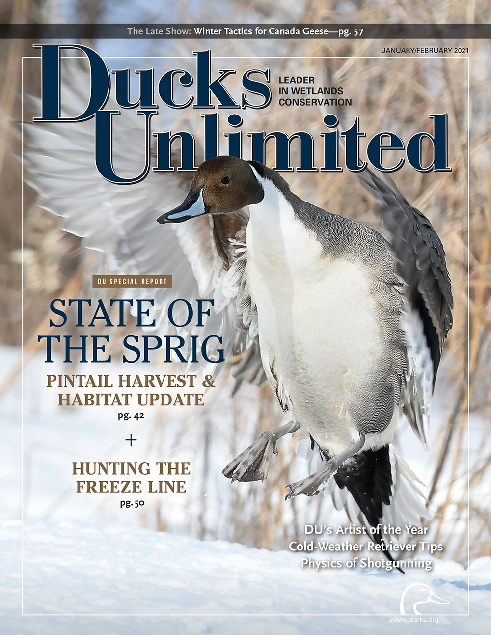Cover of Ducks Unlimited magazine